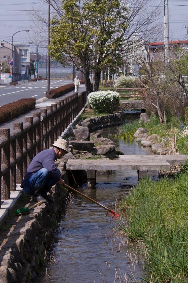 日野市用水守制度「第10回日本水...